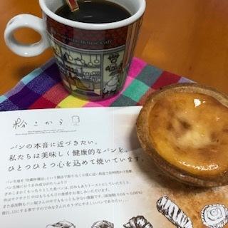 IMG_8713.jpg